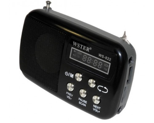 Радиоприемник WSTER WS-822