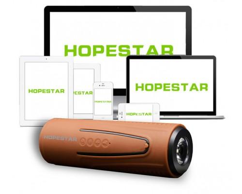 Портативный динамик Hopestar P3